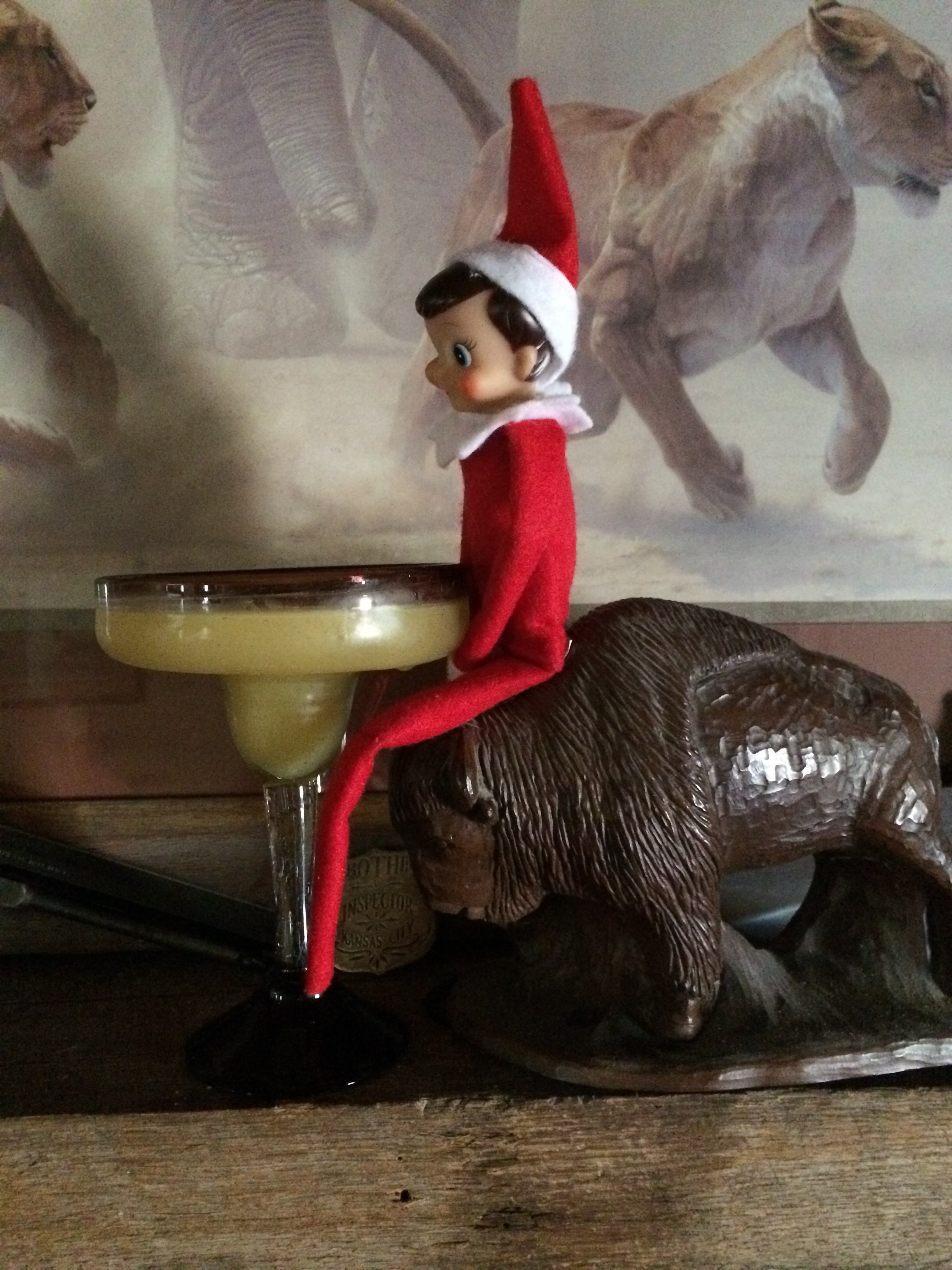 Margarita ornament - Elf On Buffalo With Margarita