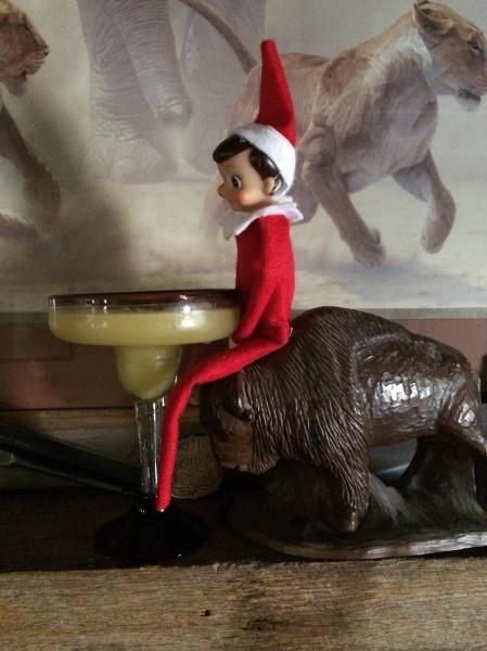 Elf on Buffalo with margarita